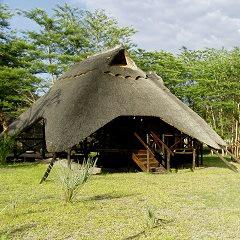 Livingstone Packages - 4-day Thorntree package