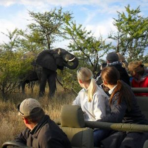 Elephant Camp and Imbabala Zambezi Safari Lodge Package: 5 days