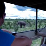 elephants eye hwange