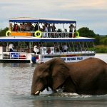 Zambezi Lunch Cruise