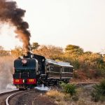 Steam Train Dinner Safari